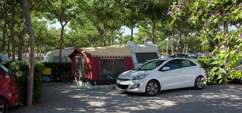 camping_bonterra_benicasim_parcelaoro10