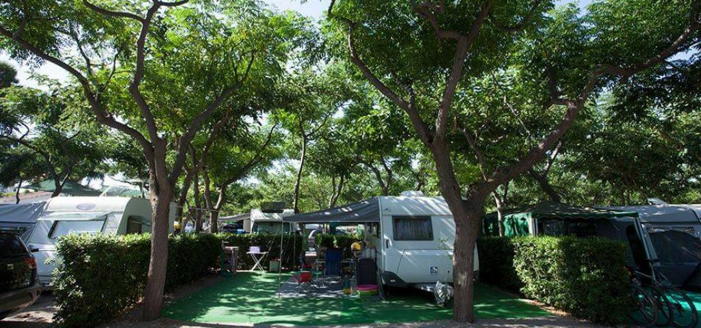 camping_bonterra_benicasim_parcelaoro12