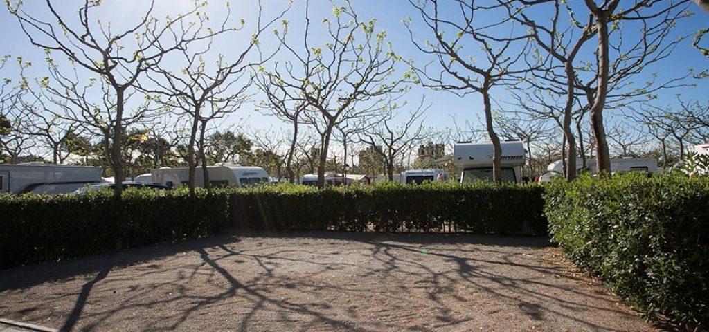 camping_bonterra_benicasim_parcelaoro2