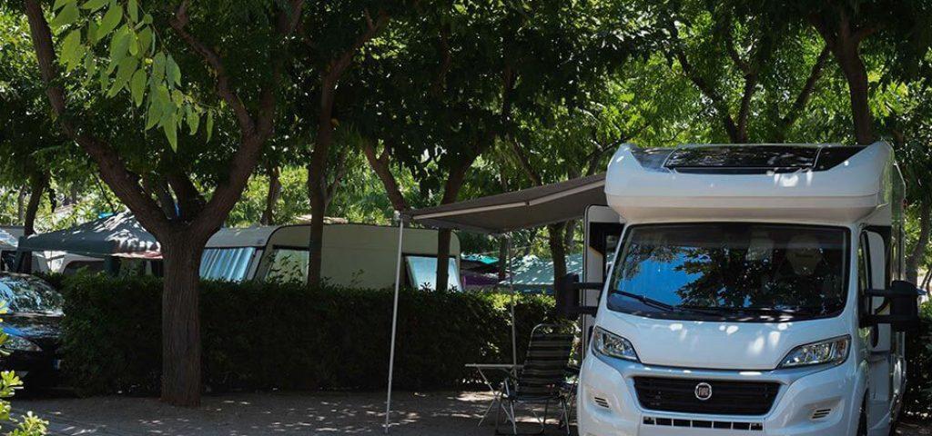camping_bonterra_benicasim_parcelaoro7