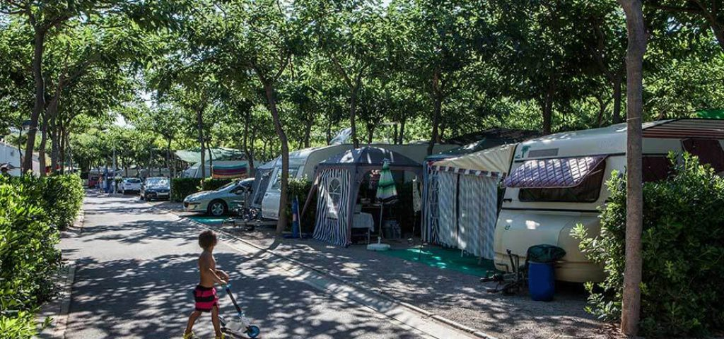 camping_bonterra_benicasim_parcelaoro9