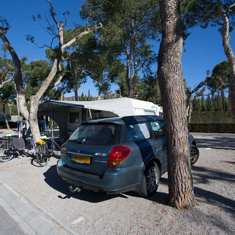 camping_bonterra_benicassim_parcelaestandar