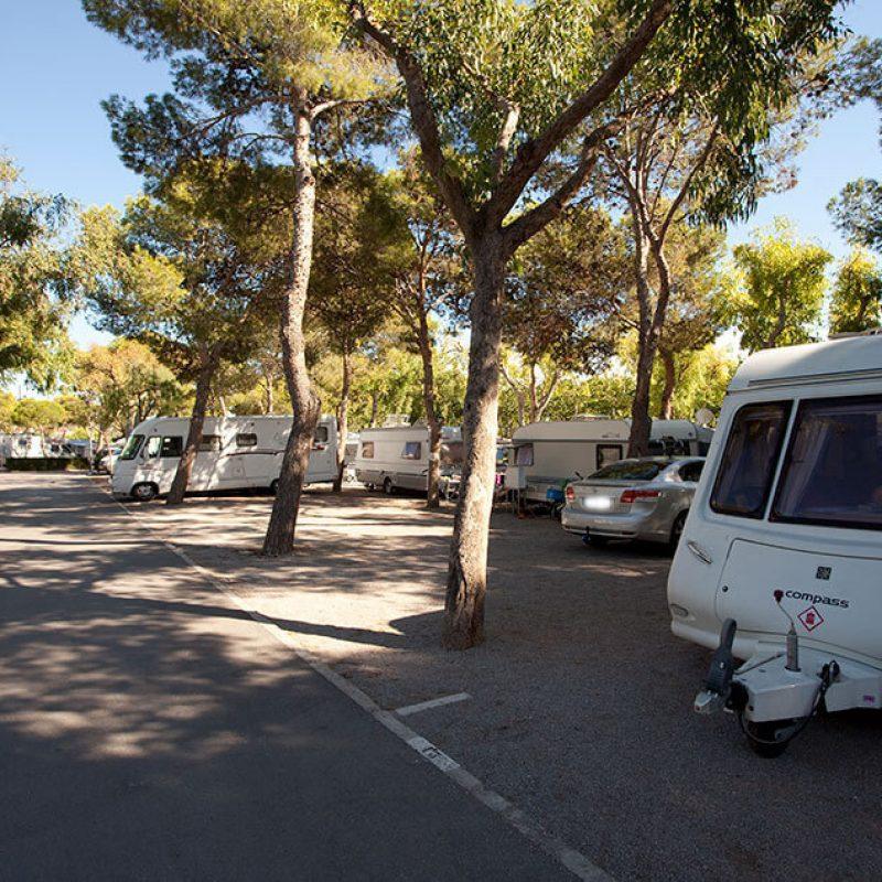 camping_bonterra_benicassim_parcelaestandar2