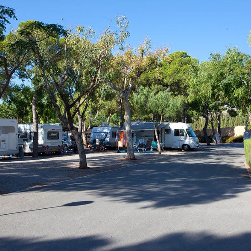 camping_bonterra_benicassim_parcelaestandar3
