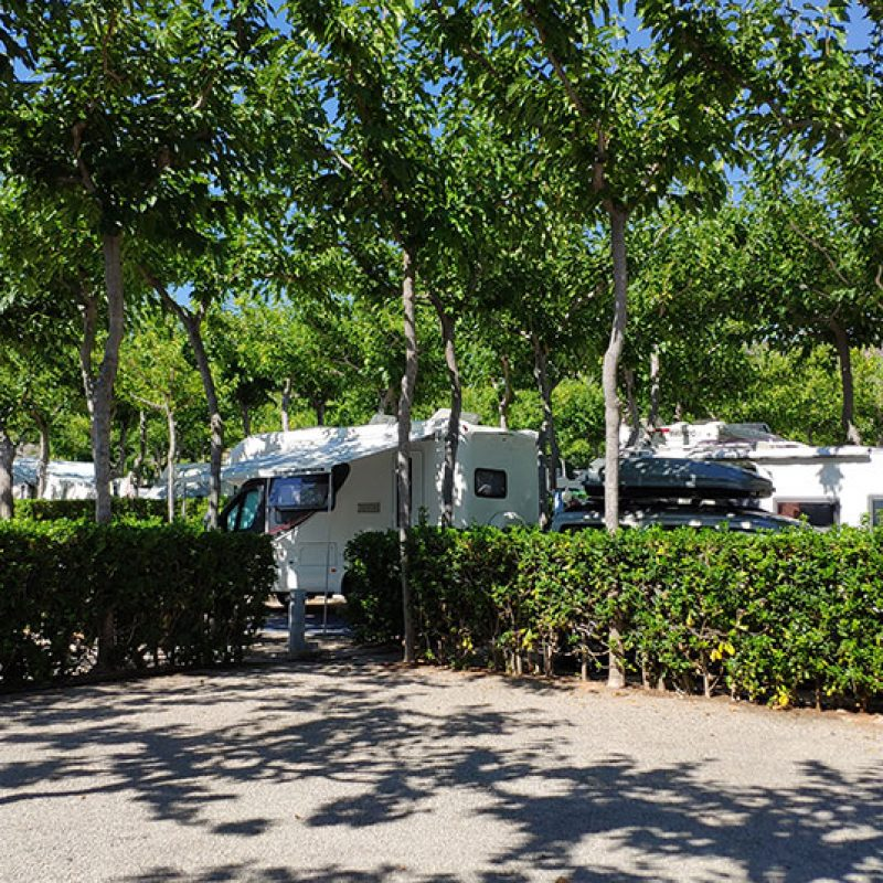 camping_bonterra_camping_parcelaplus6