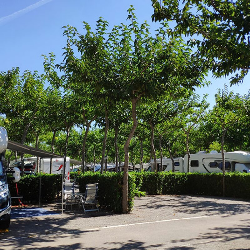 camping_bonterra_camping_parcelaplus7